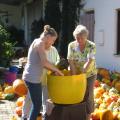 Kuerbisernte-September-2011-031