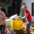 Kuerbisernte-September-2011-032